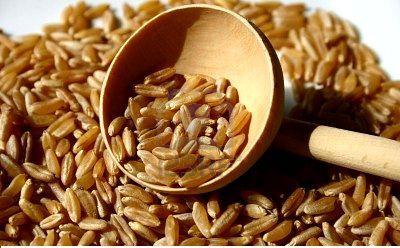 farina e chicchi di Kamut