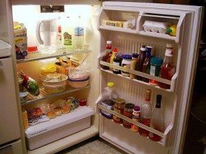 batteri-e-muffe-ecco-cosa-si-annida-nel-frigorifero_3629[1]
